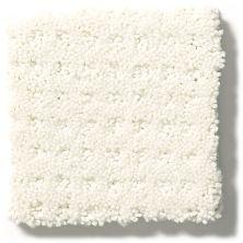 Shaw Floors Combo Crisp Linen 00171_SM021