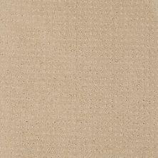 Shaw Floors Combo Golden Rule 00185_SM021