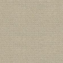 Shaw Floors Combo Mindful 00190_SM021