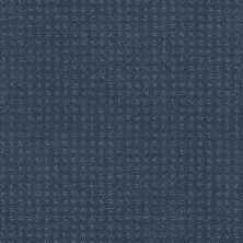 Shaw Floors Combo Royal Navy 00470_SM021