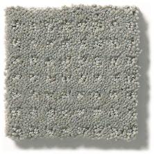Shaw Floors Combo Slate 00570_SM021