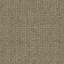 Shaw Floors Combo Mocha 00790_SM021