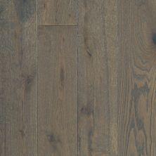 Shaw Floors Shaw Hardwoods Compute Terrain 07029_SMW04