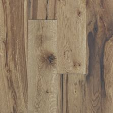 Shaw Floors Shaw Hardwoods Compute Woodlands 07066_SMW04