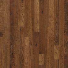 Shaw Floors Shaw Hardwoods Concede Trail 00229_SMW06