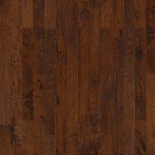 Shaw Floors Shaw Hardwoods Concede Caravan 00955_SMW06