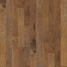 Shaw Floors Shaw Hardwoods Confirm Cinnamon 02000_SMW08