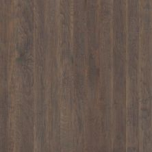 Shaw Floors Shaw Hardwoods Confirm Peppercorn 05003_SMW08