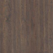 Shaw Floors Shaw Hardwoods Confirm Peppercorn 05003_SMW08