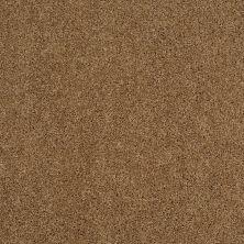 Shaw Floors Shaw On Shelf Newport Beach Leather Bound 00702_SNS07
