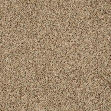 Shaw Floors Shaw On Shelf Seaside Beach Bamboo 00230_SNS08