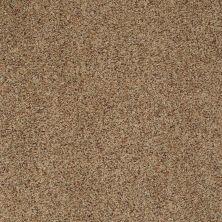 Shaw Floors Shaw On Shelf Seaside Beach Macadamia 00732_SNS08