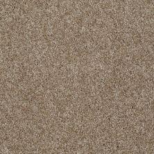 Shaw Floors Shaw On Shelf Nadana Beach Bungalow 00701_SNS22
