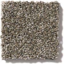 Shaw Floors Sand Dollar Beach I Arbor 00104_SNS29