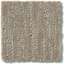Shaw Floors Starfish Beach Bronze 00761_SNS36