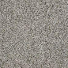 Shaw Floors Marina I Sierra Mist 00555_SNS37