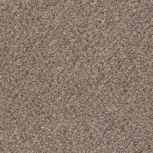 Shaw Floors Marina I Brown Reed 00751_SNS37