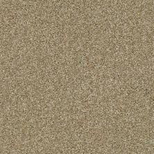 Shaw Floors Marina II Dried Clay 00137_SNS38