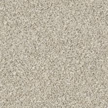 Shaw Floors Temescal Goose Feather 00101_SNS40