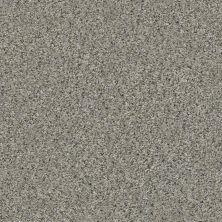 Shaw Floors Temescal Rhino 00501_SNS40