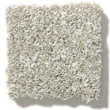 Shaw Floors Rincon Oatmeal 00100_SNS41