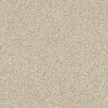Shaw Floors Oxnard White Washed 00110_SNS42