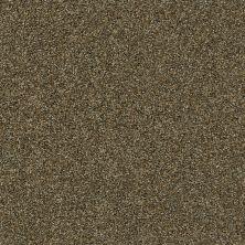 Shaw Floors Oxnard Caramel Pecan 00713_SNS42