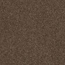 Shaw Floors Oxnard Rich Leather 00714_SNS42