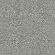 Shaw Floors Trancas Adobe 141A_SNS44