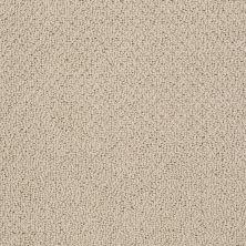 Shaw Floors Playa Azul II Safari 00188_SNS45
