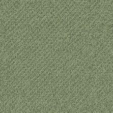 Shaw Floors Playa Azul II Lush Garden 00391_SNS45