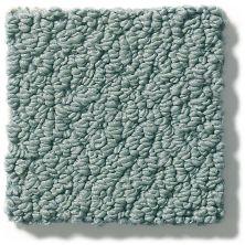 Shaw Floors Playa Azul II Oceanside 00493_SNS45
