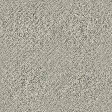 Shaw Floors Playa Azul II Slate 00570_SNS45