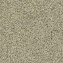 Shaw Floors Playa Azul II Mocha 00790_SNS45