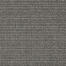 Shaw Floors Sc Beach Metal 00577_SNS46