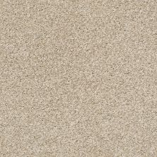 Shaw Floors Zuma Beach Biscotti 00100_SNS47