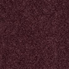 Shaw Floors Shaw On Shelf North Shore I Royal Purple 00902_SOS33