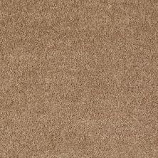 Shaw Floors Shaw On Shelf North Shore II Golden Echoes 00202_SOS34