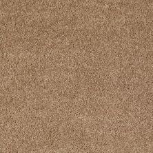 Shaw Floors Shaw On Shelf North Shore III Golden Echoes 00202_SOS35
