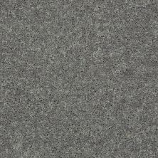 Shaw Floors Shaw On Shelf North Shore III Ink Spot 00501_SOS35