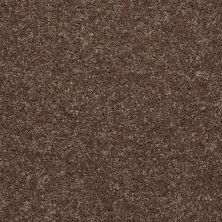 Shaw Floors Shaw On Shelf North Shore III Cattail 00702_SOS35