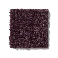 Shaw Floors Shaw On Shelf North Shore III Royal Purple 00902_SOS35