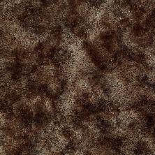 Shaw Floors Shaw On Shelf Cabarete Coffee Bean 00704_SOS37