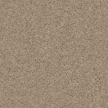Shaw Floors Shaw On Shelf Bv Island Tumbleweed 00102_SOS40
