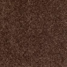 Shaw Floors Silver Strand Montana 00714_SOS54