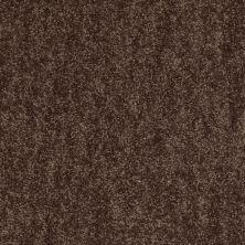 Shaw Floors Shaw On Shelf Puka (s) Chocolate Chip 00704_SOS86