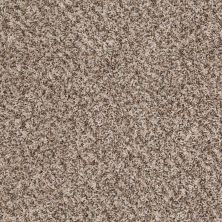 Shaw Floors Shaw On Shelf Diani (t) Suede Buff 00111_SOS89