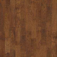 Shaw Floors Shaw Hardwoods Vicksburg Cider 00221_SW118