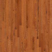 Shaw Floors Oak Solid Golden Opportunity 2 1/4″ 4s Gunstock 00609_SW442