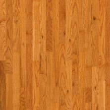 Shaw Floors Oak Solid Golden Opportunity 3 1/4″ 4s Butterscotch 00602_SW443